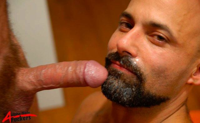Rocky Torrez gets a load of cum in his beard