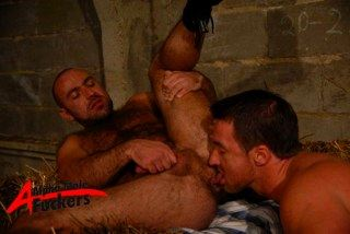 Hairy bottom raises his leg and get his furry ass rimmed by a manly top