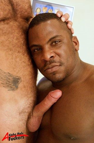 Heavy set black guy snuggle's up against a white guy's hairy chest and hard dick