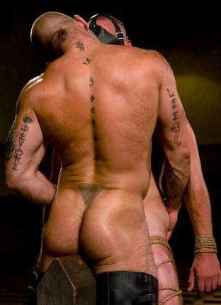 Tattooed guy kissing bound stud