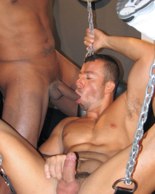 Beefy Domink Rider sucking cock in a sling