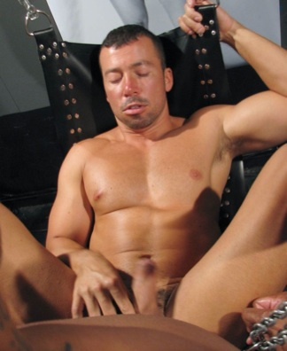 Smooth Domink RIder getting fucked in a sling