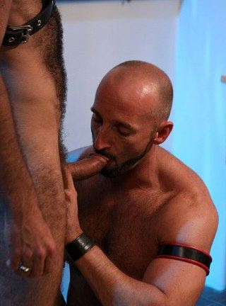 Furry leatherboy giving head