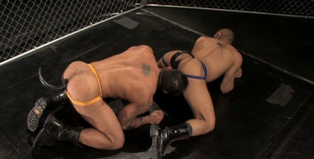 Alessio Romero and Leo Forte play with pup tails in