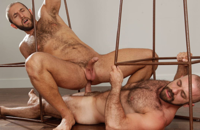 Hairy guy riding the raw cock of a furry muscle guy
