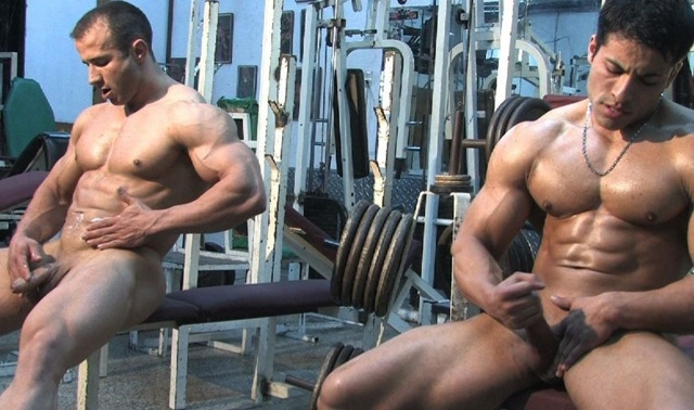 big muscle loads fly at the gym