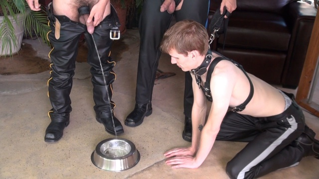 Dog Boy Heath gets his bowl filled with piss