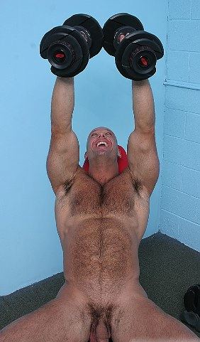 Furry muscle bear lifting weights