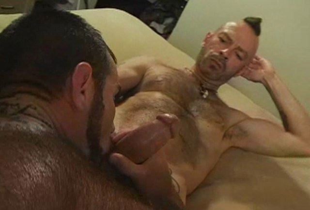 from Amir gay bareback pig personal blogs