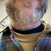 Beardybear