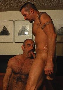 Hairy muscle daddy Tony DeAngelo sucking tattooed stud David Griffin's cock