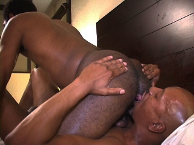 Bald stud eating a hairy black ass