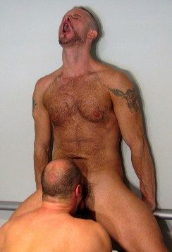 Hairy top Thomas Steel in extreme pleasure from a blowjob
