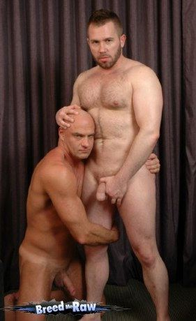 Hairy stud squeezes his hard penis ad a smooth stud kneels