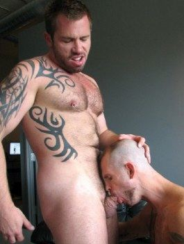Inked pierced stud gets his cock swallowed to the balls