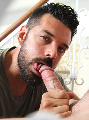 Pic from Oral Pig
