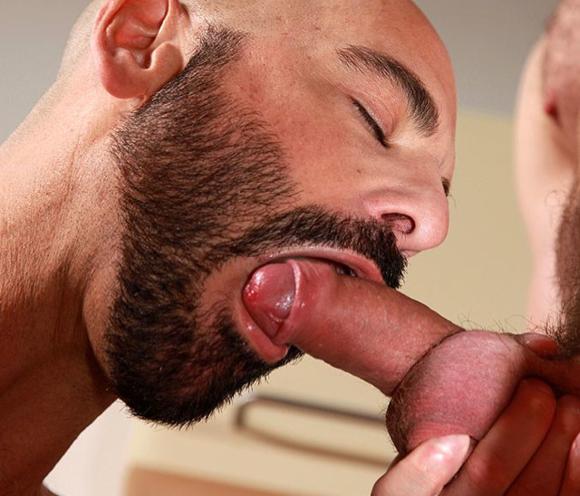 bearded Adam Russo sucks an uncut cock