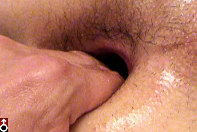 Hairy ass gaping open with fingers inside