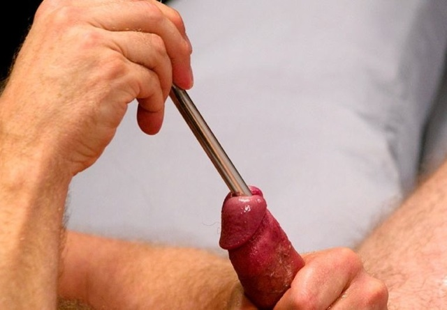 Thick sounding rod inderted into a hard cock