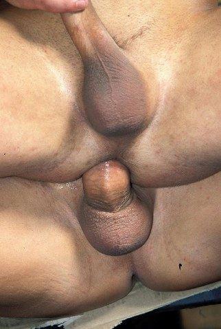 Eyebrow gay top or bottom
