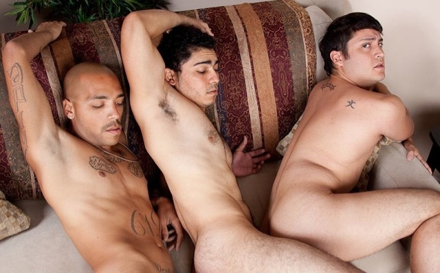 Three pigs on the couch fucking each other bareback