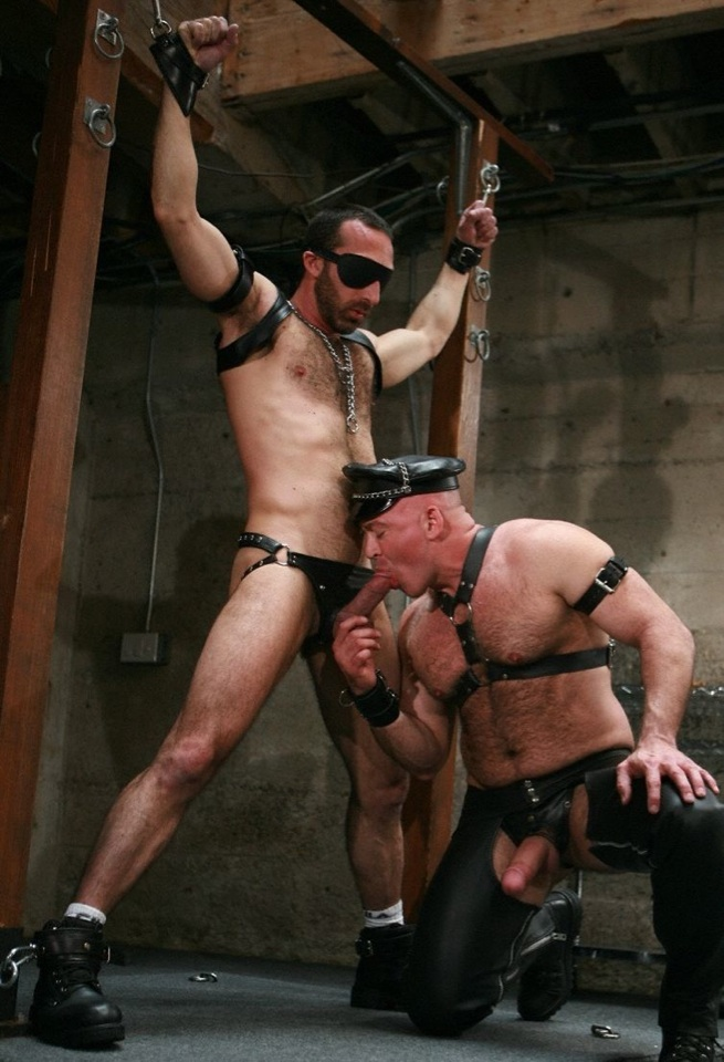 Restrained and blindfolded Xavier gets his hard dick sucked