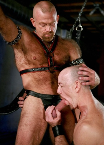 Beefy ginger bear Rob Thomas getting his cock sucked