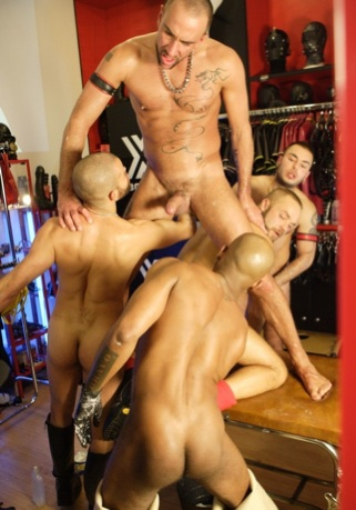 Five fist pigs play in the leather store