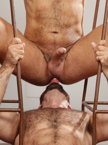 Hairy guy rimming a hairy guy