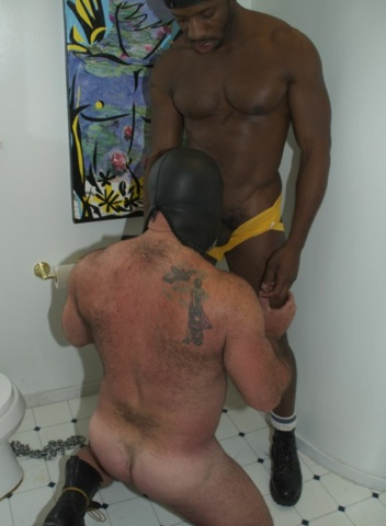 Beefy hairy Daddy Bear Bronson Gates sucking cock with a hood on
