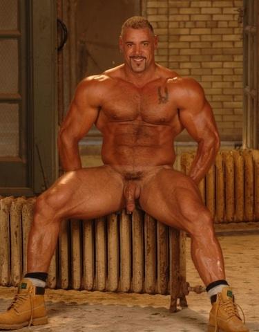 osos gay muscular
