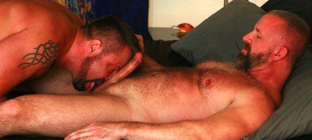 Bearded muscle bear licks another mans balls