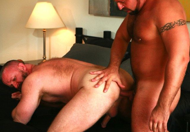 Furry muscle bear takes raw cock is his ass
