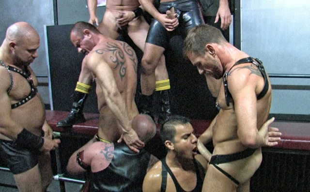 Hot group of muscled pigs sucking cock and playing