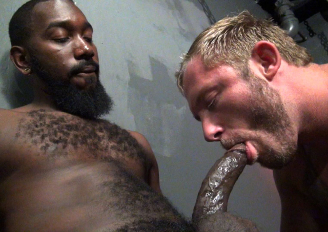 Blond scruffy pig Preston Johnson sucks big black cock of Nino Sky