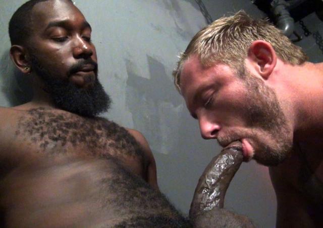 Blond scruffy pig Preston Johnson sucks big black cock of Nino Sky