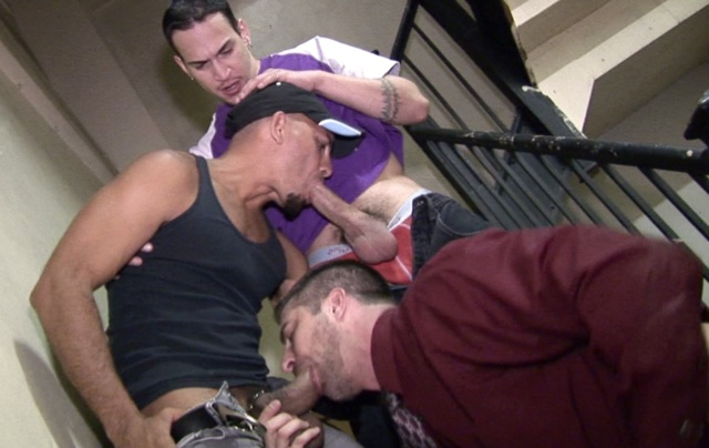Brandon, Antonio and Dimitri sucking cock in a stairwell