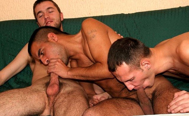 Three young guys sucking each others cocks