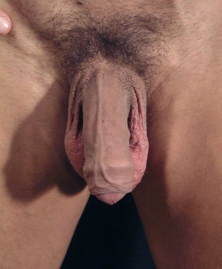 Dick pic of Marlo (Stud Port)