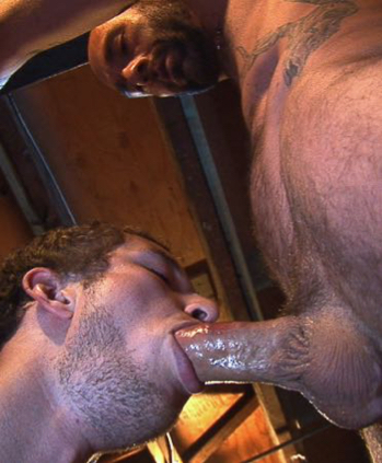 Masculine top getting a blowjob by a scruffy bottom