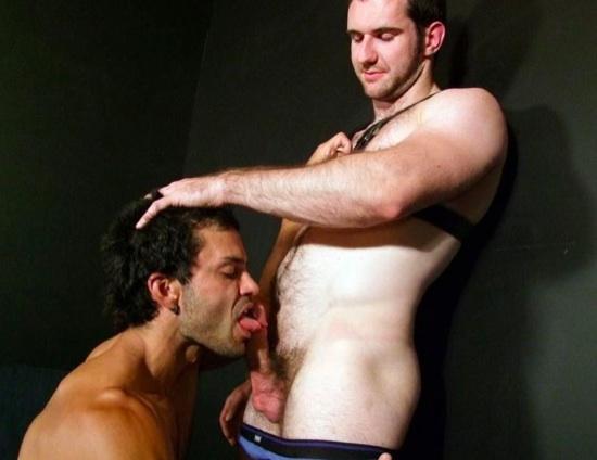 Rogan works the head of Josh's hard cock