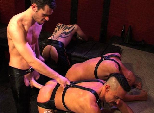 Three pigs eager to get Peto Coast's dick and load