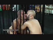 Sucking Uncut Cock In A Cage
