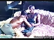 Muscle Farm Studs Blow Cock